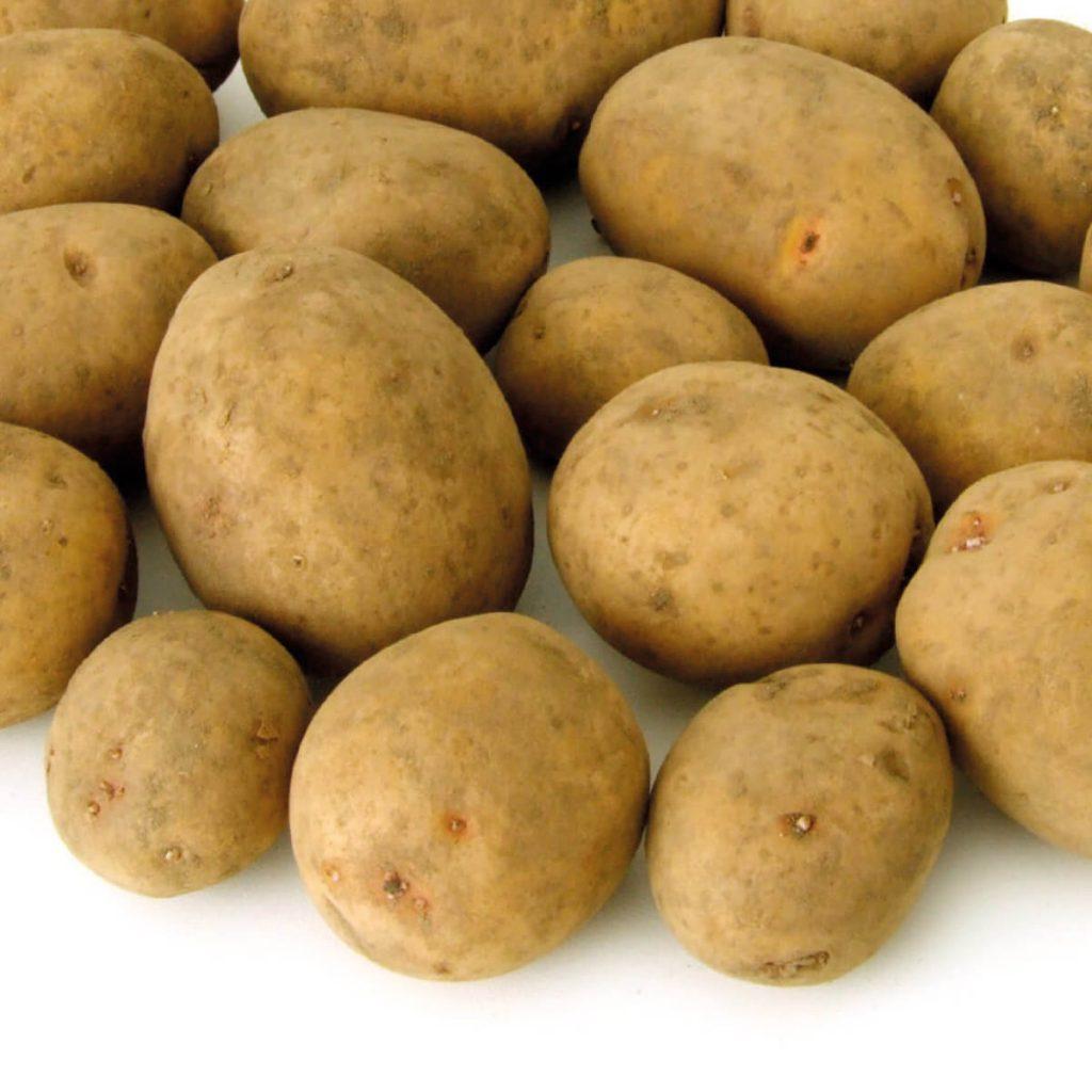 Frische, ganze Kartoffeln